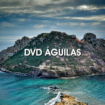 DVD Á�guilas